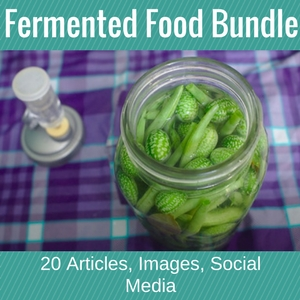 Fermented Food Bundle
