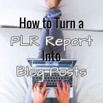 How to Convert a PLR Report Into Blog Posts