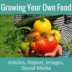 Growing Your Food