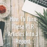 3 Ways to Turn These Fitness PLR Articles Into a Report